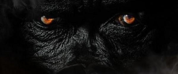 Sheek Louch - Silverback Gorilla 2 album cover